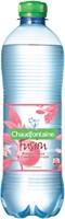 Water Chaudfontaine Fusion Pompelmoes petfles 0.50l-2