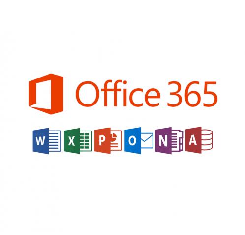 Office 365 Business Essentials-2